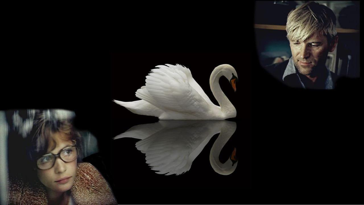 Не стреляйте в белых лебедей смотреть онлайн
