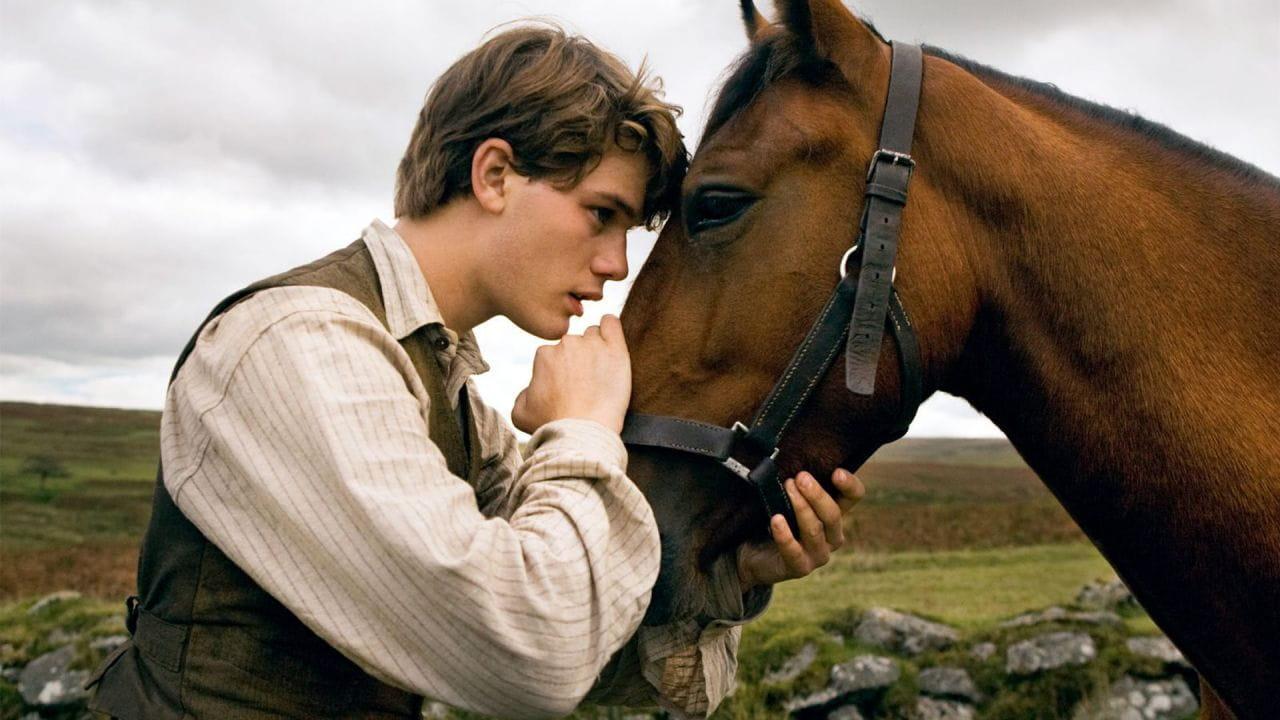 Бойовий кінь дивитися онлайн
