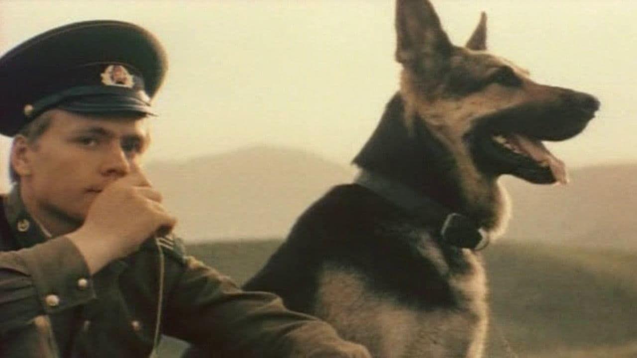 Прикордонний пес Алий дивитися онлайн