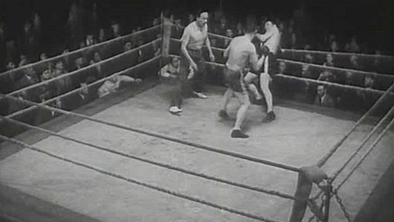 Боксеры смотреть онлайн