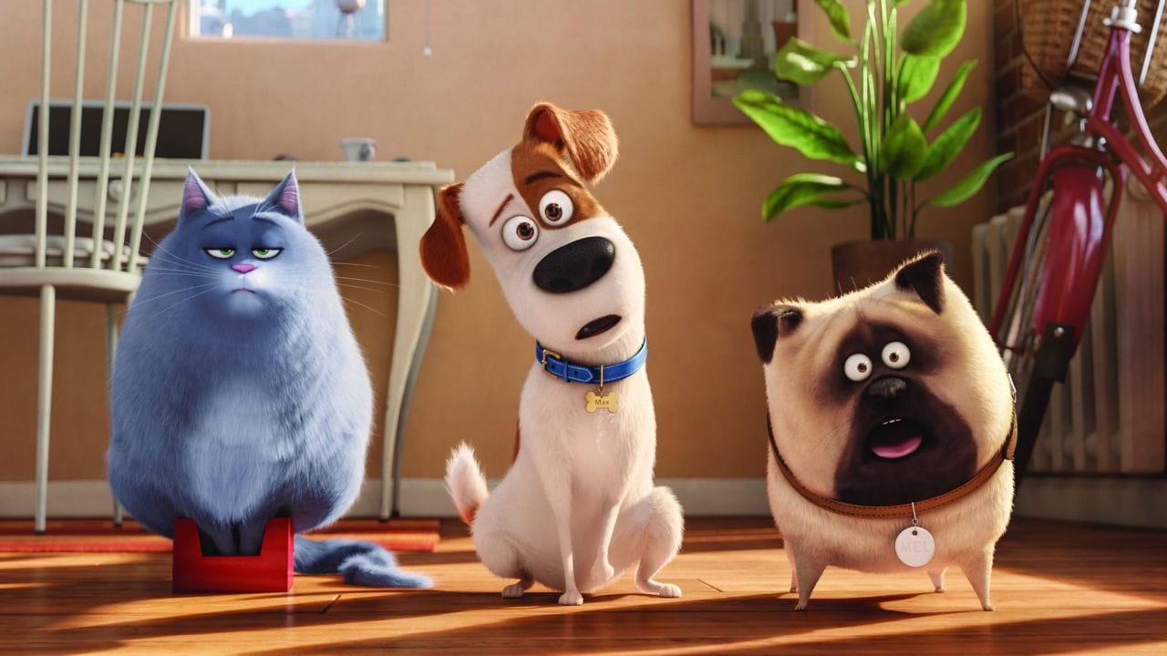 The Secret Life of Pets watch online
